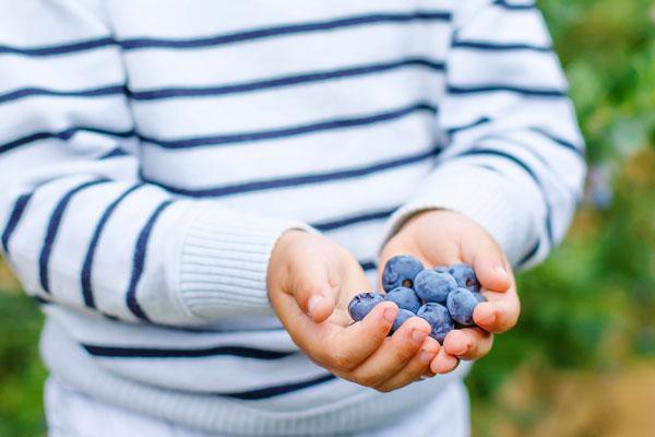 l'alimentation et l'enfant – le 16 et 17 décembre – avec Dr Nathalie Burger